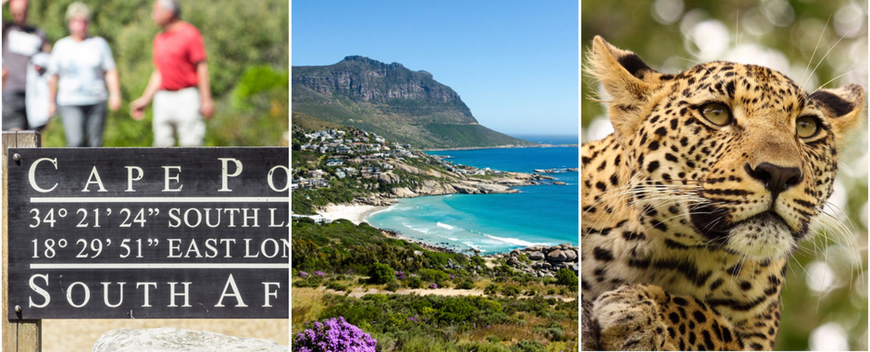 News Special Offers In Africa The Indian Ocean