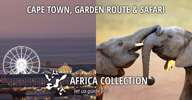 Cape Town, Garden Route and Safari Travel Itinerary Package