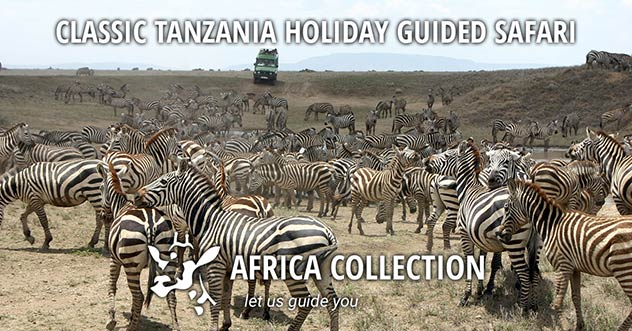 Classic Tanzania Holiday Guided Safari Travel Itinerary Package