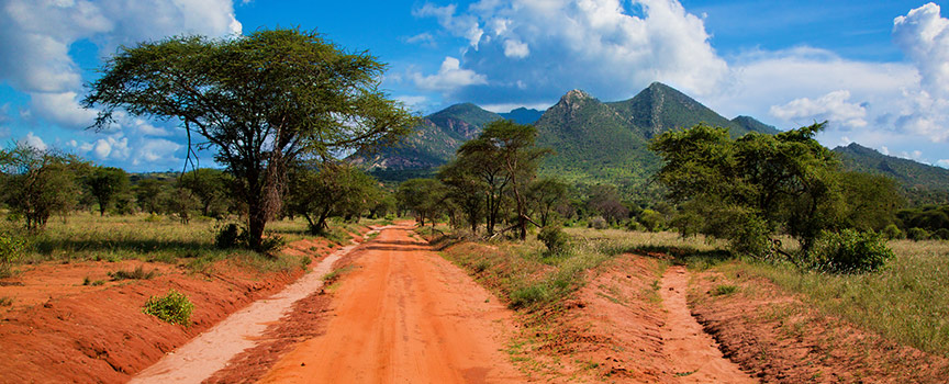 The lush Kenya countryside
