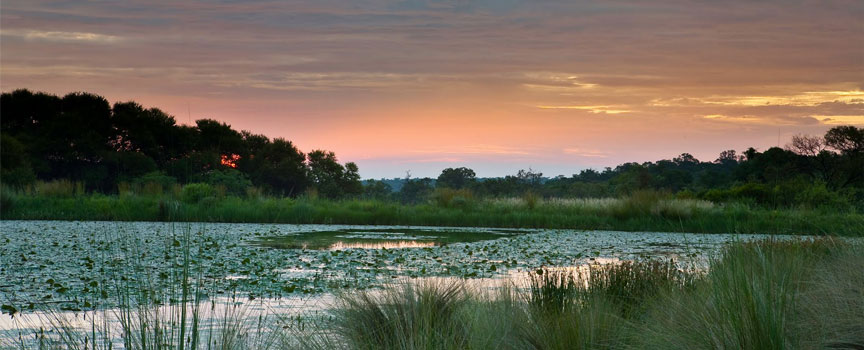 Limpopo and Panorama Route wetlands