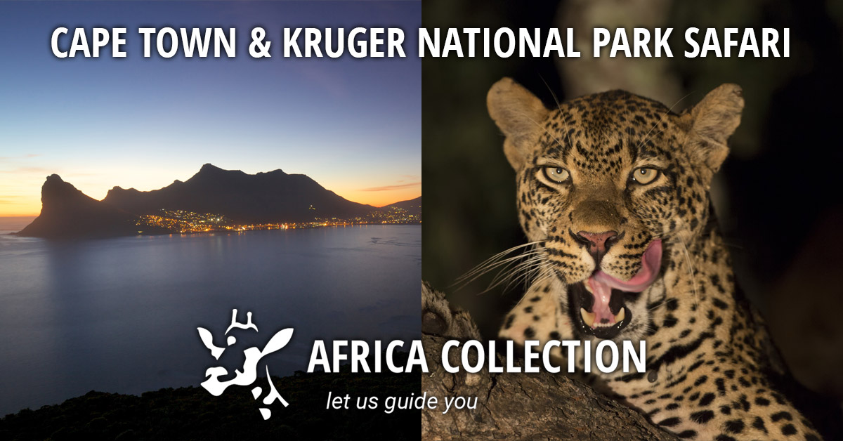 Cape Town and Kruger National Park Safari Travel Itinerary Package