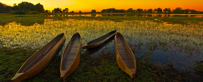 Moremi Game Reserve local canoes