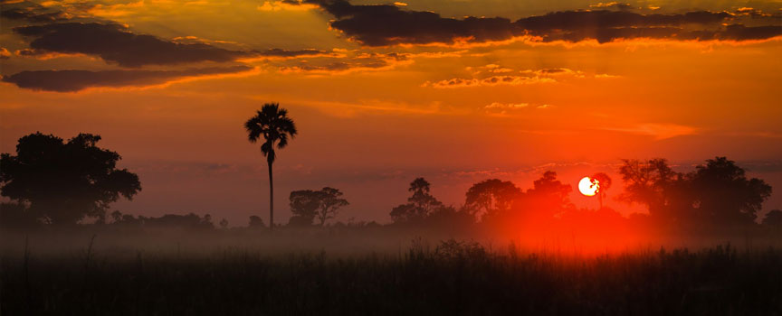Moremi Game Reserve red sunrise