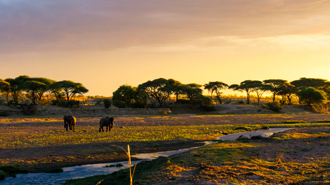 Ruaha National Park spectacular scenery