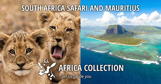 South Africa Safari and Mauritius Beach Travel Itinerary Package