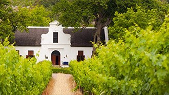 South African winelands wine tasting
