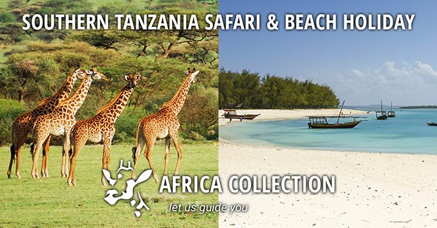 Southern Tanzania Safari amd Beach Holiday Travel Itinerary Package